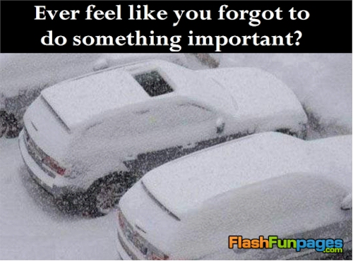 Tags Funny Pictures Snow Winter