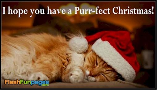http://flashfunpages.com/ecards/wp-content/uploads/2013/12/purr-fect-Christmas.jpg