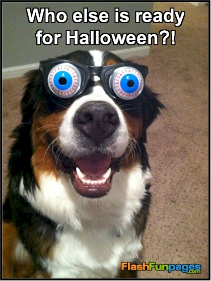 http://flashfunpages.com/ecards/wp-content/uploads/2014/09/ready-for-Halloween.jpg