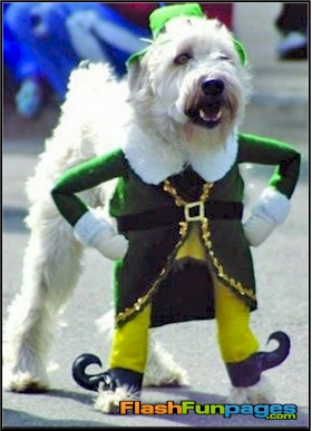 Dog Elf Costume & Halloween costumes | Ecards for Facebook