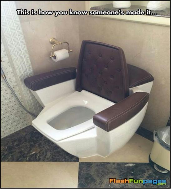 Toilet For Dogs That Flush