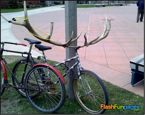 redneck handle bars